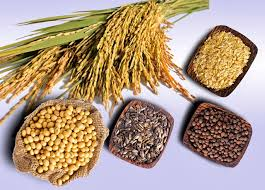 Điều trị viêm âm đạo bằng cách Tăng cường ngũ cốc và các loại hạt